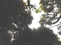 180426-03.jpg