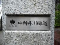 180430-05.jpg