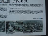 180521-06.jpg