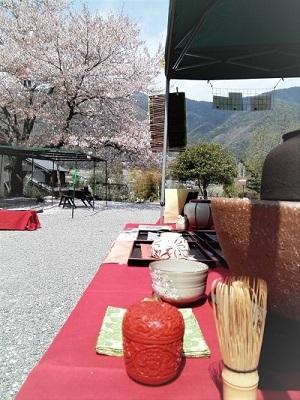 さこだの桜まつり (2)