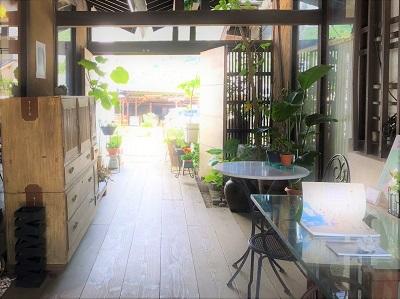 ギャラリー草 (2)