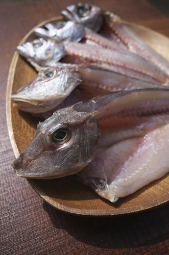 地魚の干物 ホウボウ・クロムツ