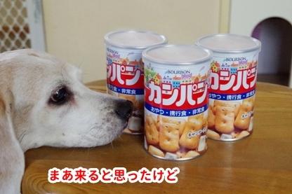 食べ物 3