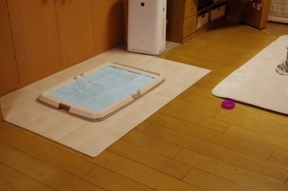 風呂上り 2
