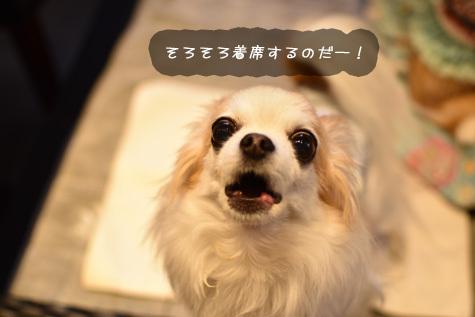DSC05130328.jpg