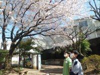 180330 (お花見) (5)