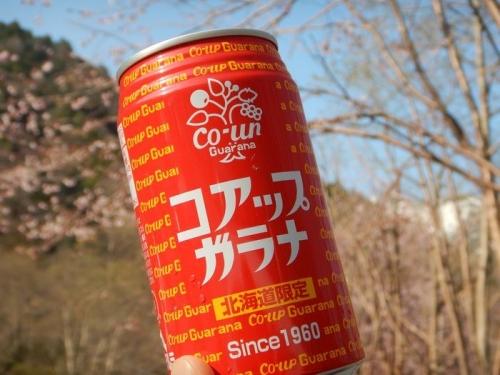 20180501 針ノ木岳 (26)