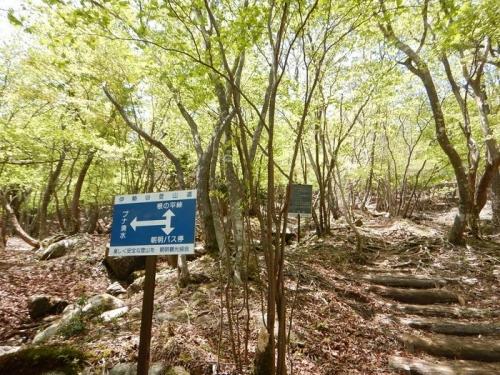 20180505 青岳からハライド (7)