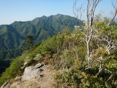 20180505 青岳からハライド (19)
