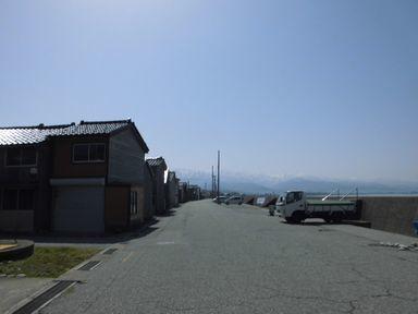 afujihana0429-6.jpg