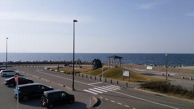 akingyo0401-4.jpg