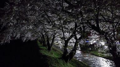 asakura0405-2.jpg