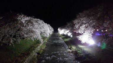 asakura0405-3.jpg