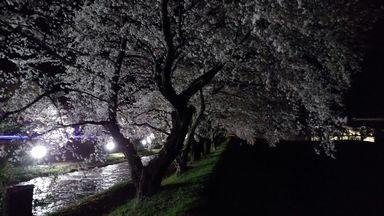 asakura0405-7.jpg