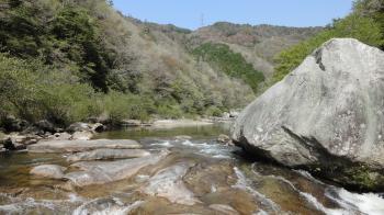 新緑の巴川