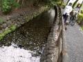 0401六郷用水