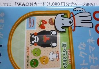 waon181000.jpg
