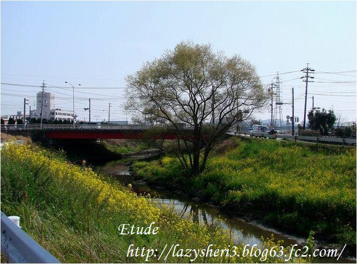 20070306-1.jpg
