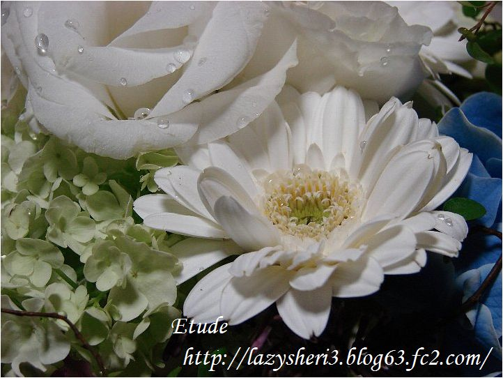 20070601-3.jpg