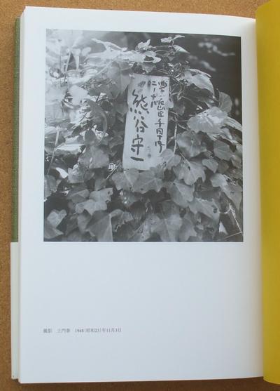 熊谷守一 蒼蝿 03
