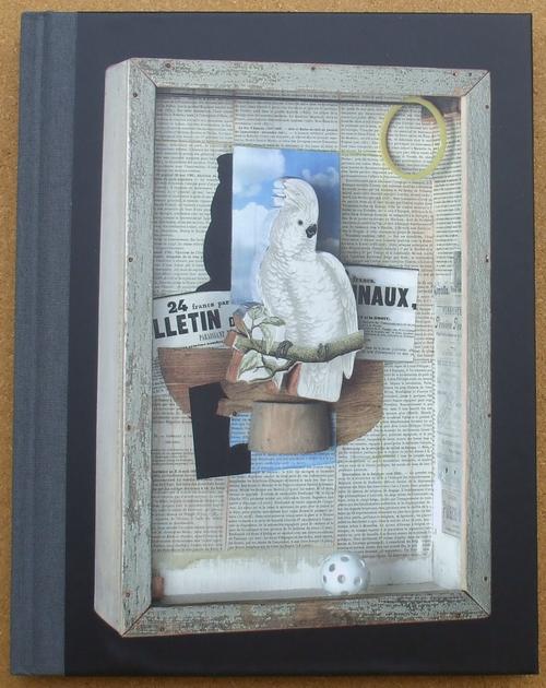 joseph cornell - birds of a feather 01