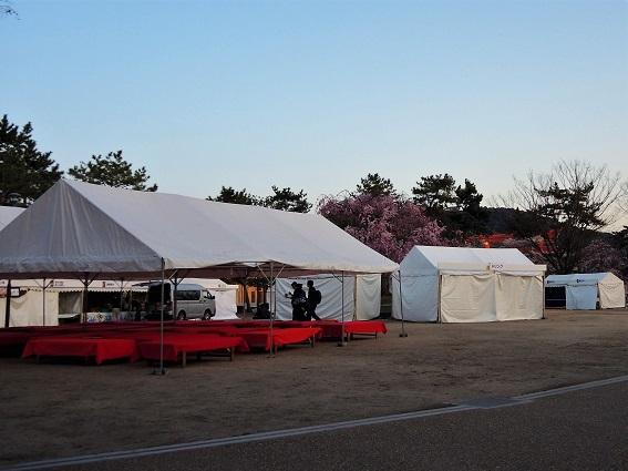 sakuyosa2.jpg