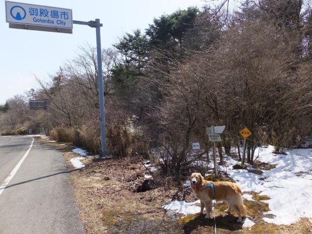 須山口登山道2018.3.31 185