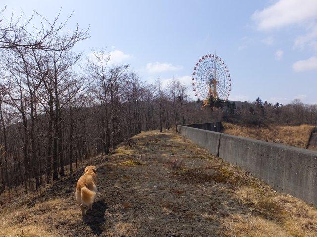 須山口登山道2018.3.31 202