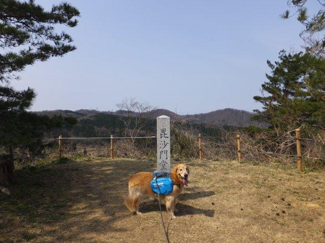 春日山城跡2018.4.1 050