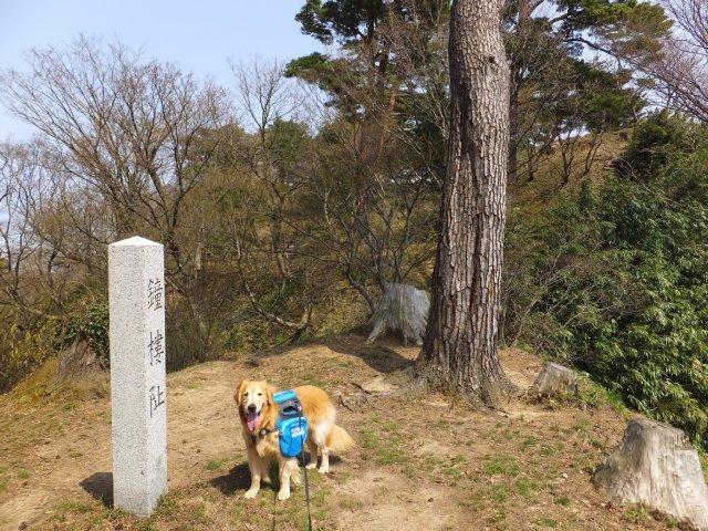 春日山城跡2018.4.1 068