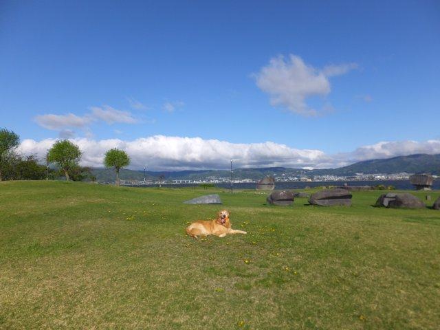 諏訪湖畔公園2018.4.26 043