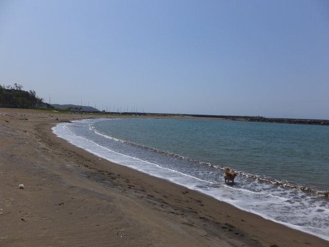 西番神海水浴場 2018.5.5 039