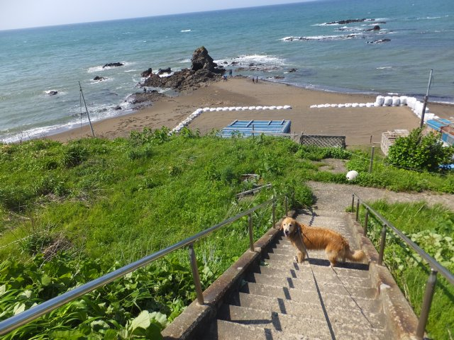 西番神海水浴場 2018.5.5 074