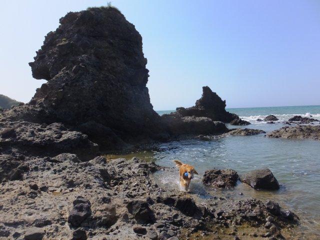 西番神海水浴場 2018.5.5 102