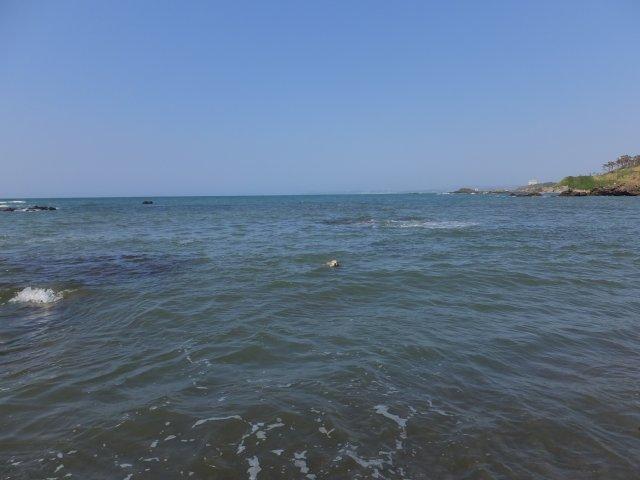 西番神海水浴場 2018.5.5 124
