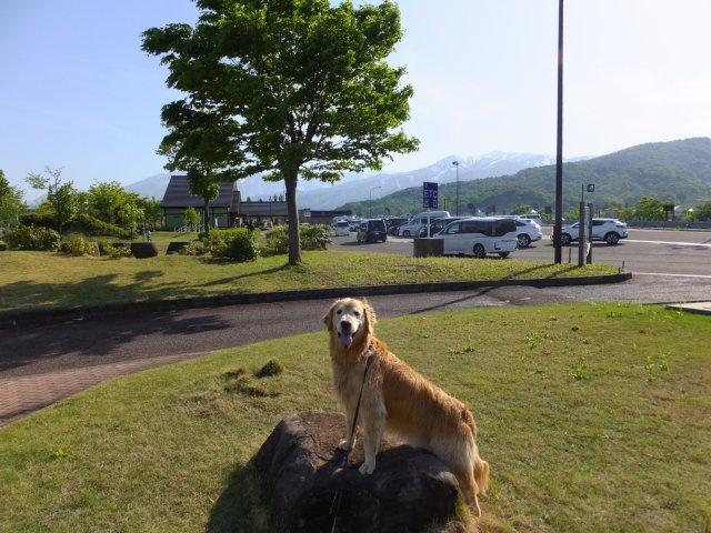 西番神海水浴場 2018.5.5 129
