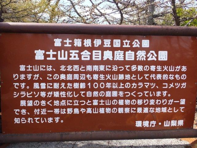 奥庭 大沢崩れ 2018.5.12 012