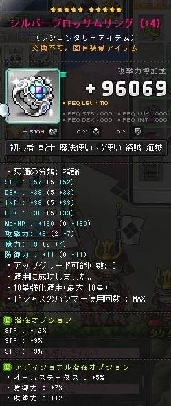 Maple170410_194516_20180405085537f16.jpg