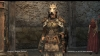 Dragons Dogma Online__213
