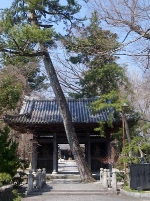 渡岸寺1803