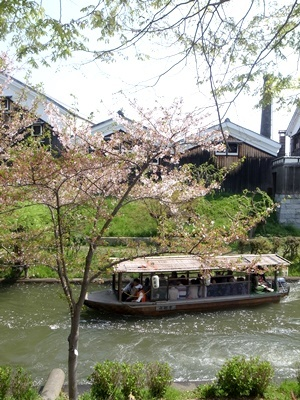宇治川派流と酒蔵と桜1804