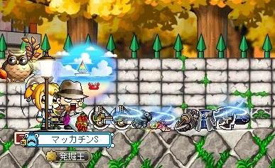 Maple_17161a.jpg