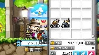Maple_17171a.jpg