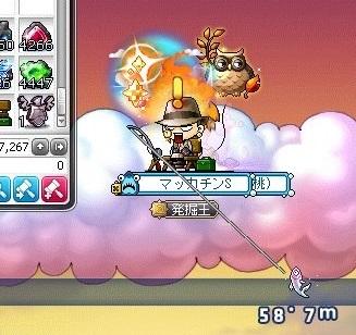 Maple_17222a.jpg