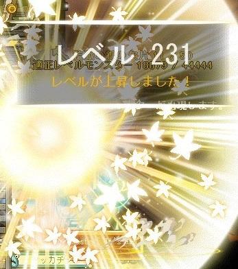 Maple_17232a.jpg