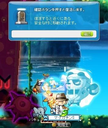 Maple_17239a.jpg