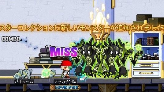 Maple_17289a.jpg