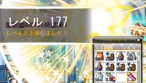 Maple_17305a.jpg