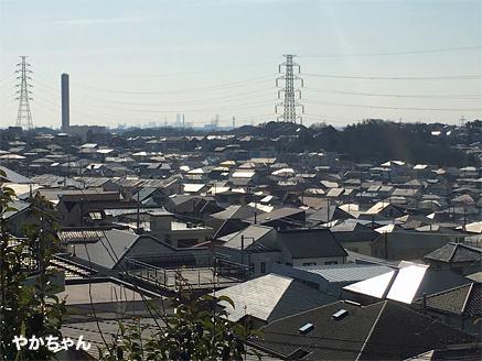 弘法の松公園9やかちゃんさん