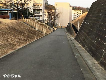 弘法の松公園11やかちゃんさん